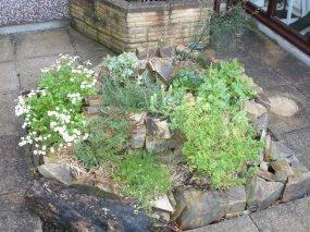 Espiral d'herbes aromàtiques. Ús òptim d'un espai reduït.