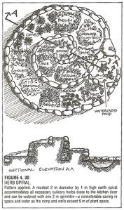 Herb-Spiral-Drawing